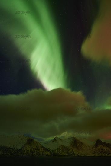Northern lights (Aurora borealis), Senja, Norway