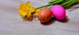 Ostern Hintergrund Osterglocken