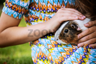 Little girl petting guinea pig