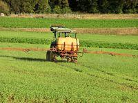 fertilize fields
