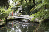 japanese garden with pagoda and water
