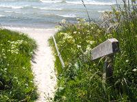 Path to the sea on the island Bornholm