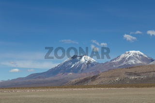 Flamingos and volcanos in Sajama National Park
