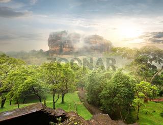 Garden near Sigiriya