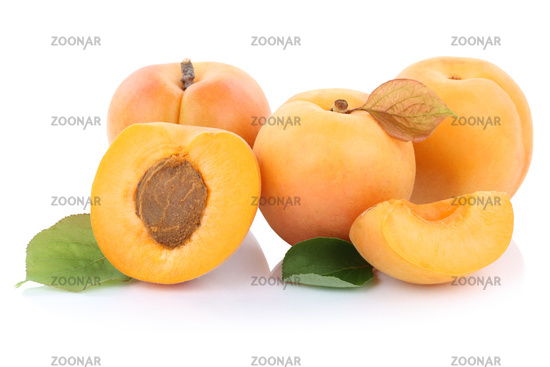 apricot apricot fruit fresh fruit cut half fruit cut-out isolated isolated