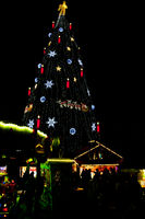 Christmas market in Dortmund, Germany, with fir