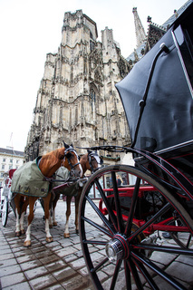 horse-drawn carriages near the walls of St. Stephen's Cathedral, Vienna
