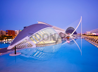 Valencia#39;s City of Arts and Science Museum