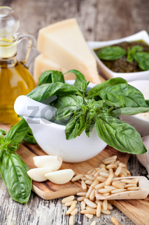 Ingredients for making pesto