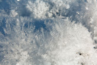 Ice needles like a pillow