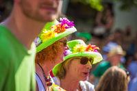 Carnival of Cultures (Berlin 2014)