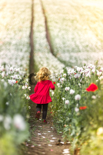 Small girl running through the poppy field