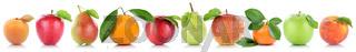 Früchte Apfel Orange Frucht Äpfel Aprikose Orangen Obst in einer Reihe Freisteller freigestellt isoliert