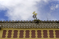 yellow plant on a Canarian house roof, Tenerife