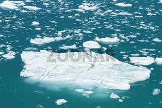 Iceberg from Tracy Arm Fjord in Alaska