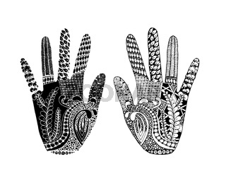 Floral palm, hand drawn zentangle style for our design