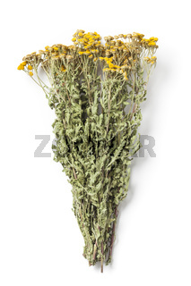 Bunch of Dried Herb Tansy