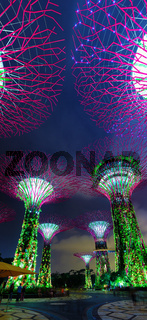 Colorful Illuminated Towers of Gardens by the Bay in Singapore