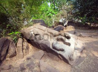 Crocodile in Wat Phu Champasak temple in Laos