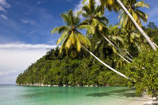 Tropische Insel in der Strait of Iris, Indonesien