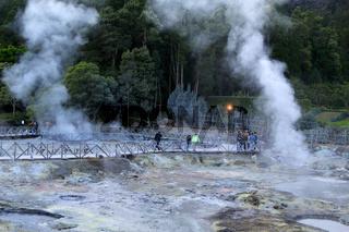 Fumaroles and hot-springs near Furnas, Sao Miguel, Azores