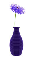 purple flower in vase isolated on white background