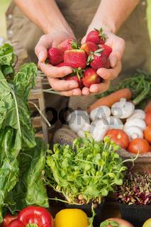 Farmer showing his organic strawberries