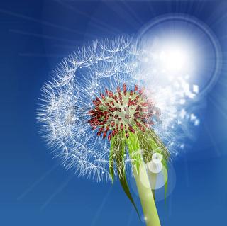 Dandelion seeds blown in the blue sky.