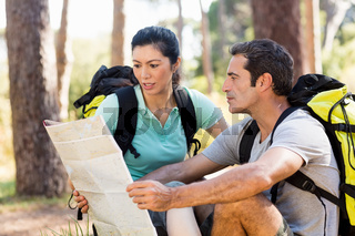 Couple sitting and studying a map