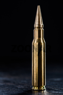 Large-caliber cartridge on a dark background