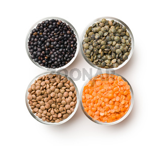 various types of lenses legumes