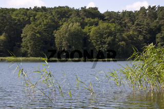 Landschaft am Roofensee20