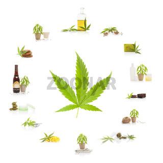 Cannabis.