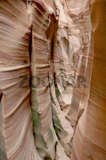 Zebra Slot Grand Staircase Escalante National Monument