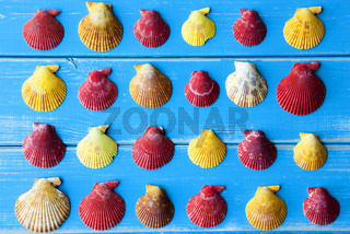 Yellow And Red Seashells As Texture On Blue Wooden Background