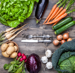 Fresh and organic bio vegetables on a wooden background