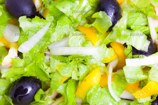 Assorted salad of green leaf lettuce with squid an