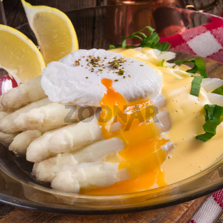 white asparagus served with a fine hollandaise sauce and Poache