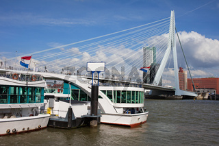 Erasmus Bridge in Rotterdam Downtown