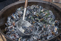 Bowl with mussels in cauldron