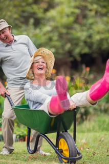 Happy senior couple playing with a wheelbarrow