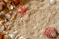 Star fish and Sea shells on the sand.
