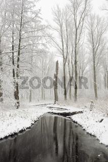 Winter am Mühlenbach... Meerbusch *Nordrhein-Westfalen*