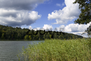 Landschaft am Roofensee35