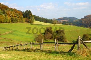 pferdekoppel im sauerland landschaft