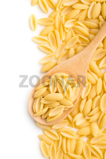 uncooked italian pasta in wooden spoon