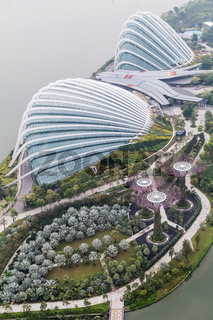 Flower Dome Cloud Forest and Supertree Grove Gardens by Bay
