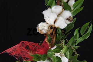 Blumengesteck aus einer Baumwollpflanze mit geöffneten Samenkapseln und Dekorband aus roten Fasern