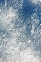 A carpet of ice mist