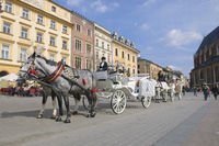 Carriages for hire in Krakow Poland